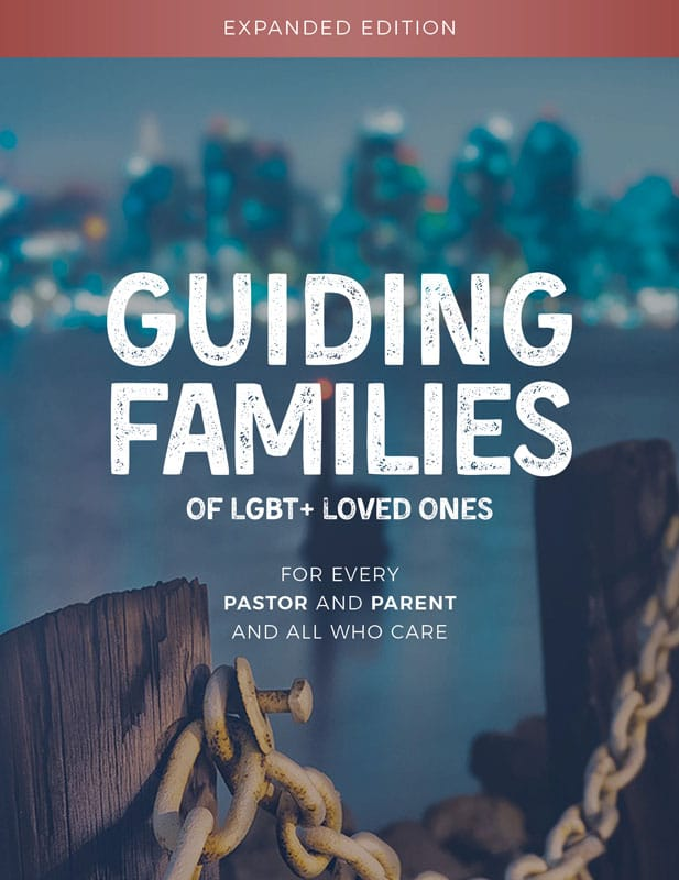 Front cover of Guiding Families Expanded Edition